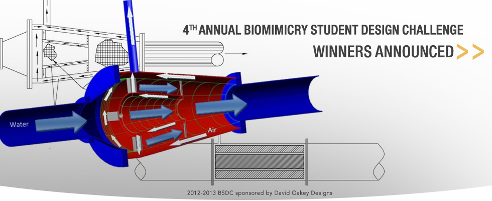 Biomimicry Student Design Challenge winning design