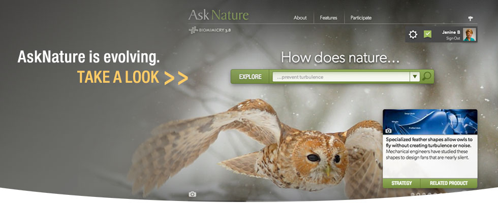 AskNature ReDesign